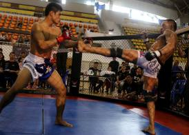 fernando match thailand